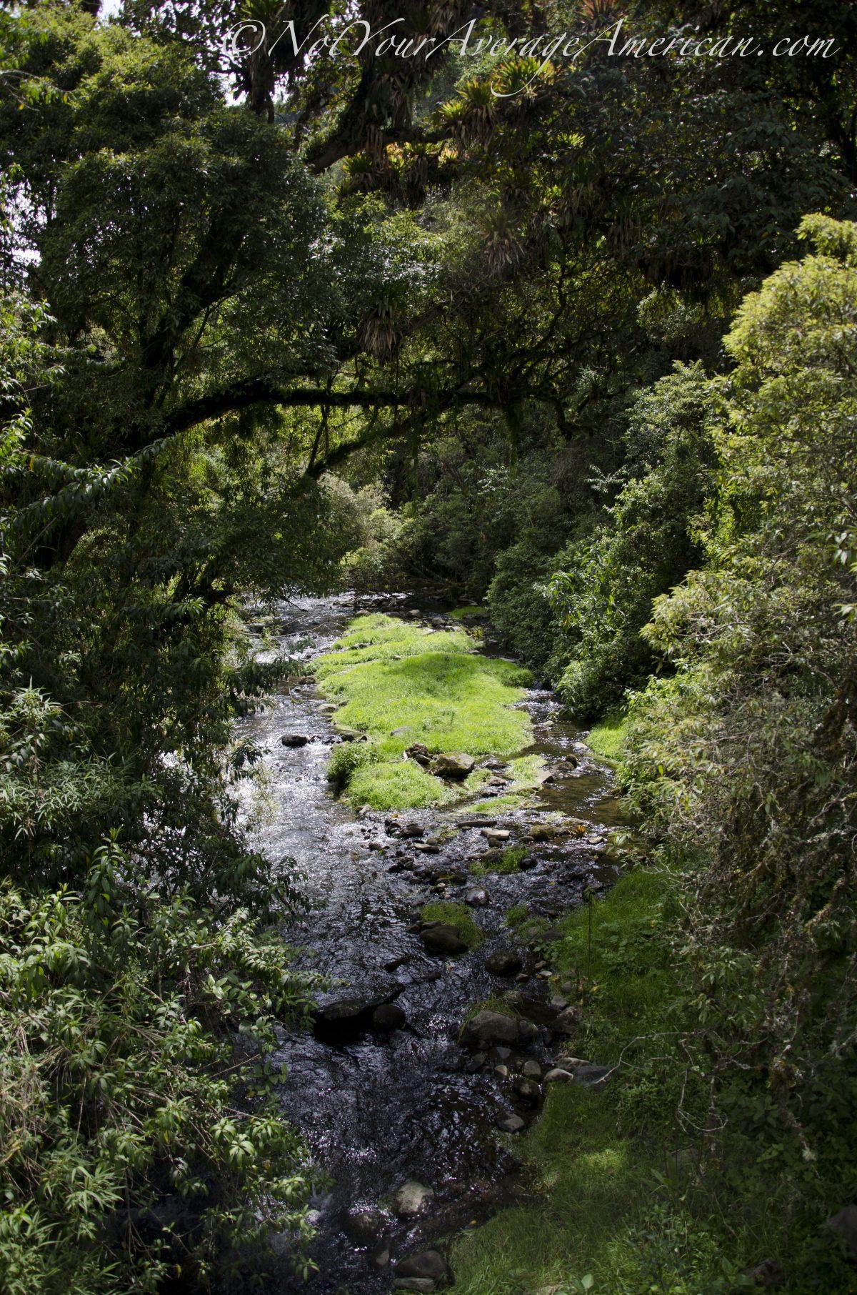 The Rio Pita, Cascada Condor Machay, Ecuador