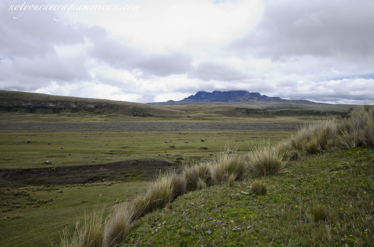 Old Lahar Flow in the Distance