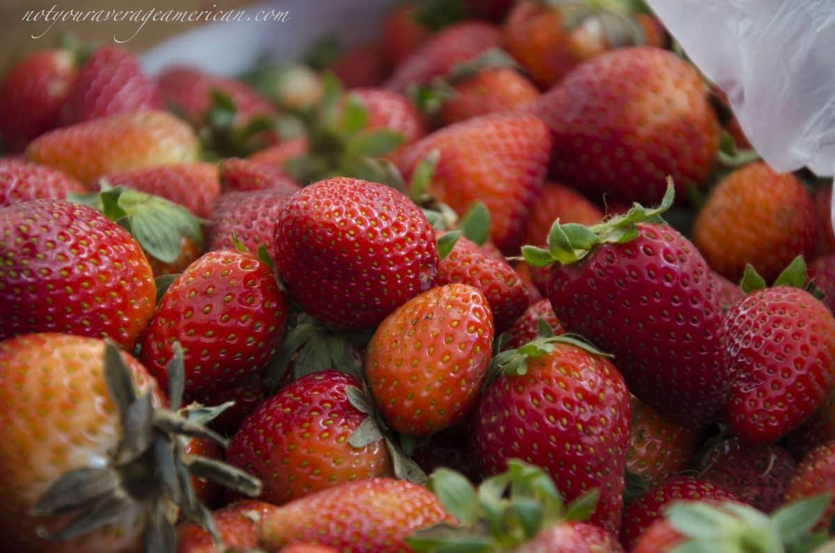 Freshly picked strawberries, Mercado La Esquina, Cumbaya, Ecuador