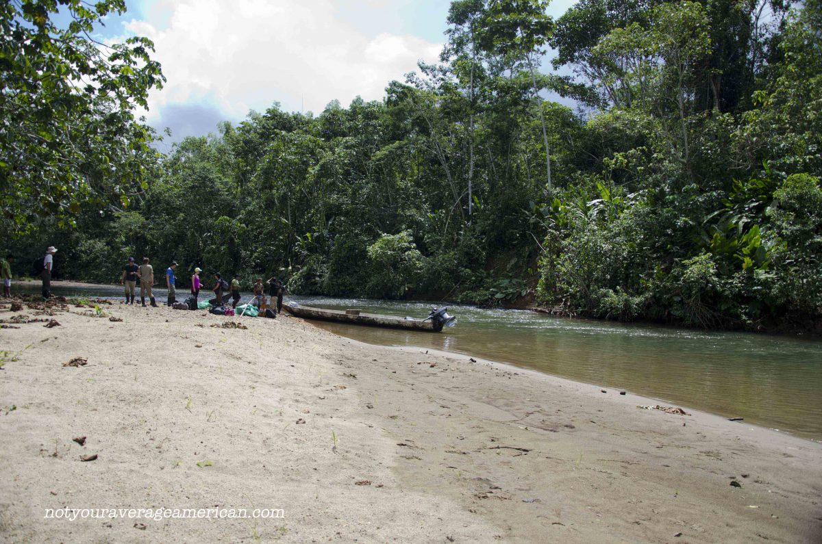 We used dugout canoes with gas motors for travel, Huaorani Lodge