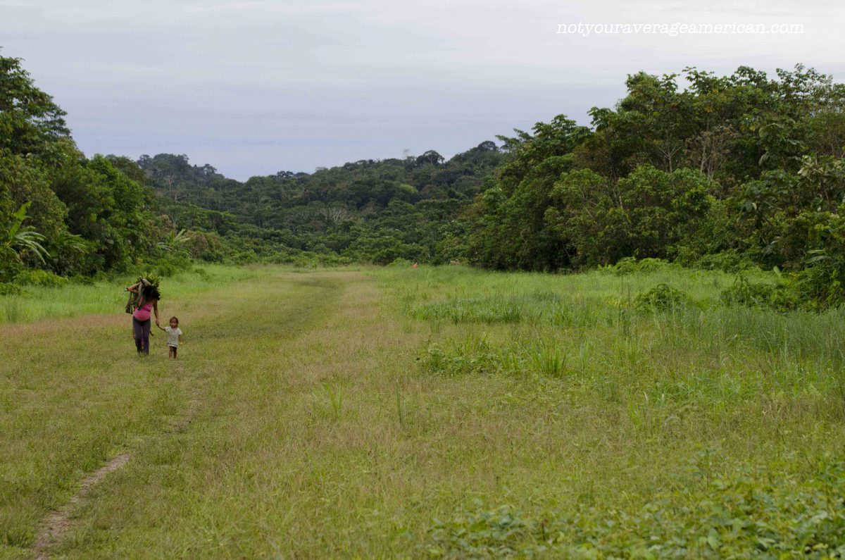 The runway is also a major thoroughfare for foot traffic as it is free from mud, Huaorani Lodge