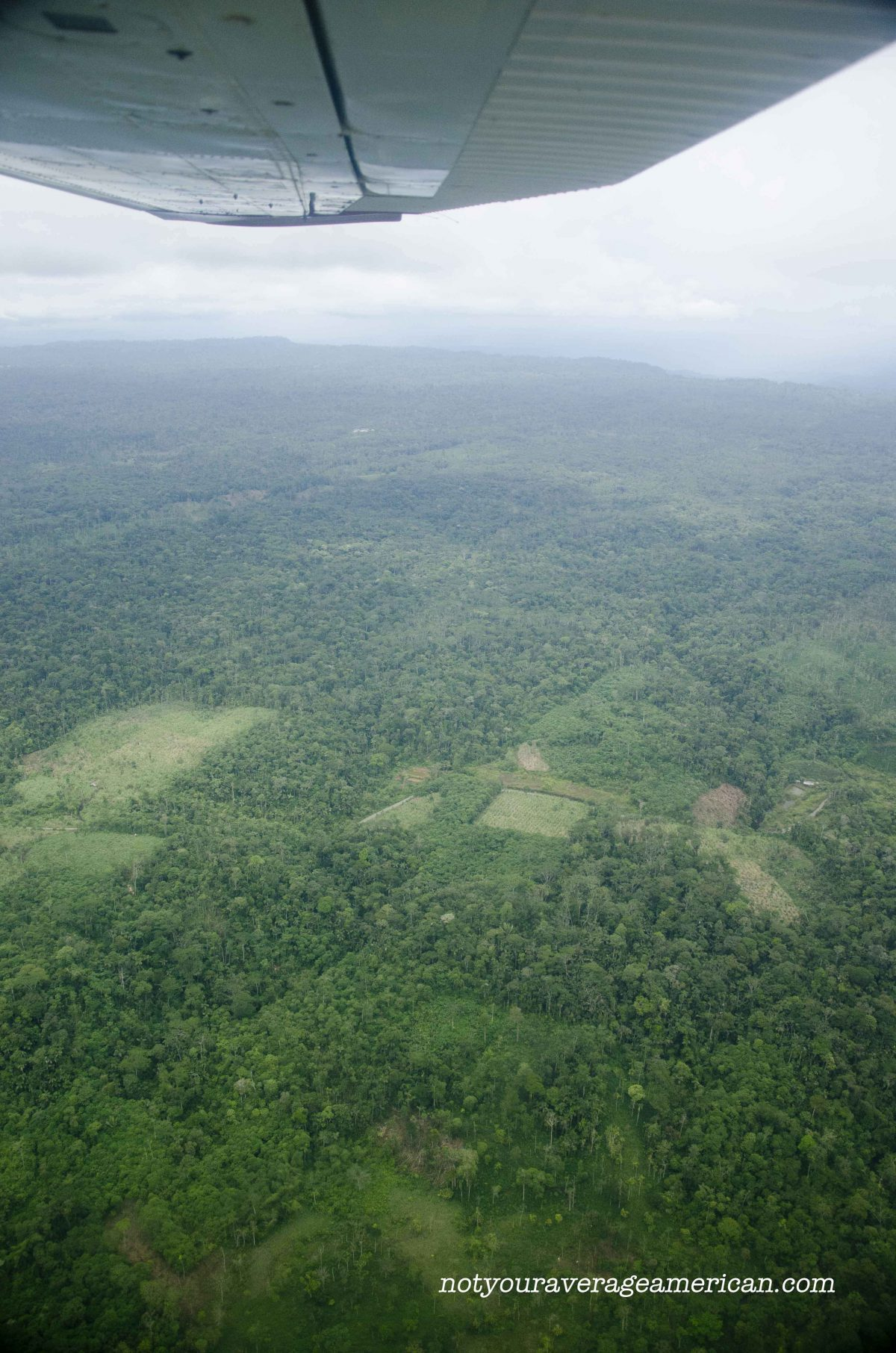 Leaving Shell for the jungle by plane allows us to see the changes taking place, Huaroani Lodge