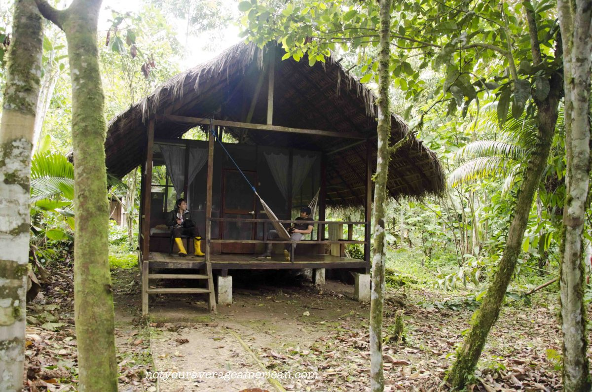 My boys sitting outside their cabin, Huaorani Lodge