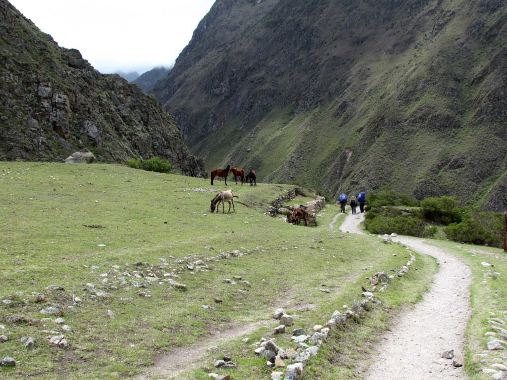 On the trail near Llactapata