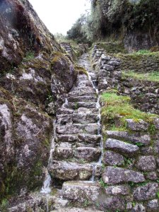 Rugged Steps