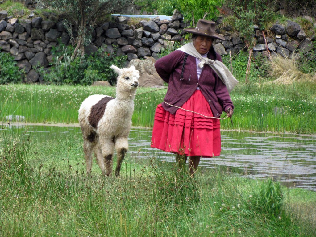 Working the farm or working the tourists? Or both?