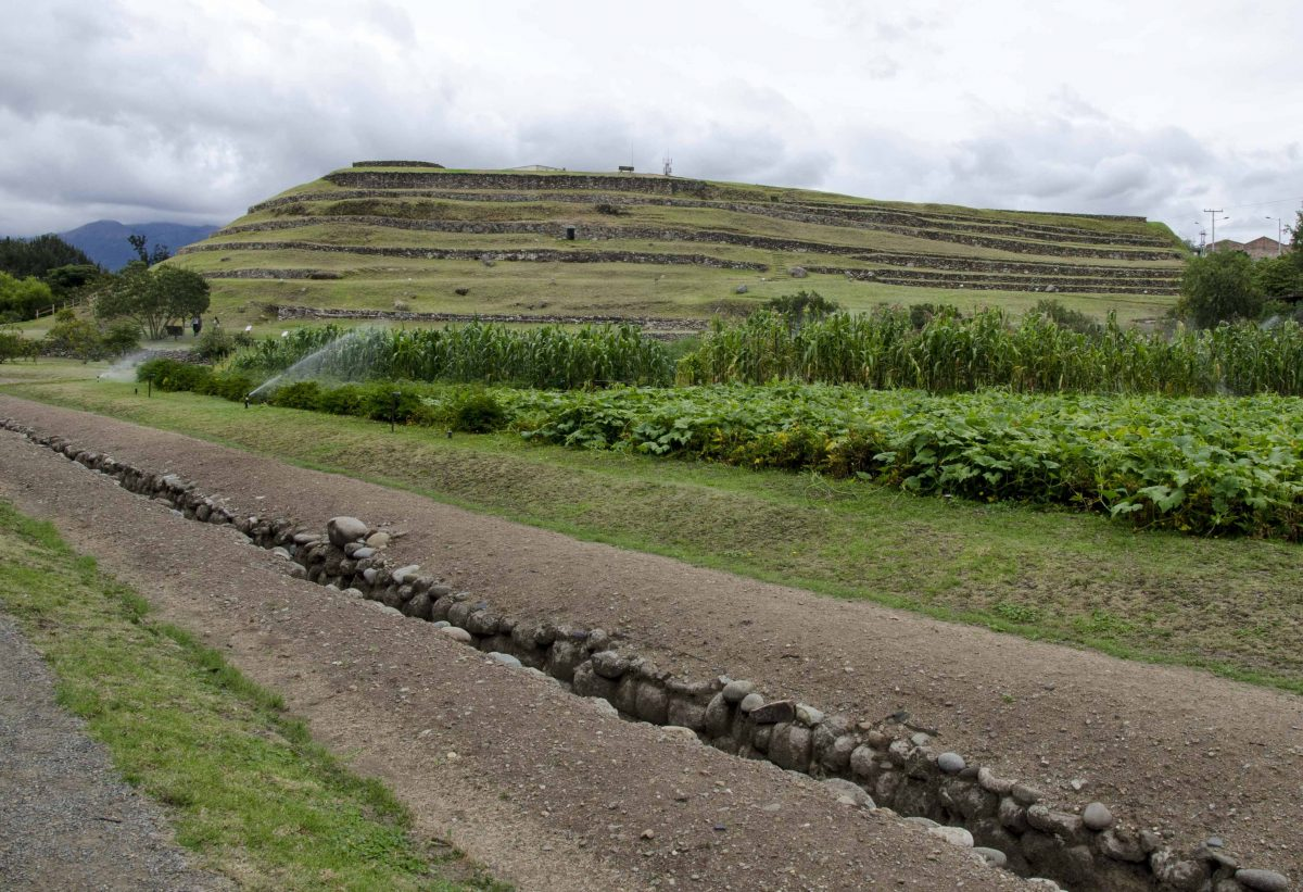 Looking up at the terraced walls of Pumapungo from the gardens and aqueducts below.