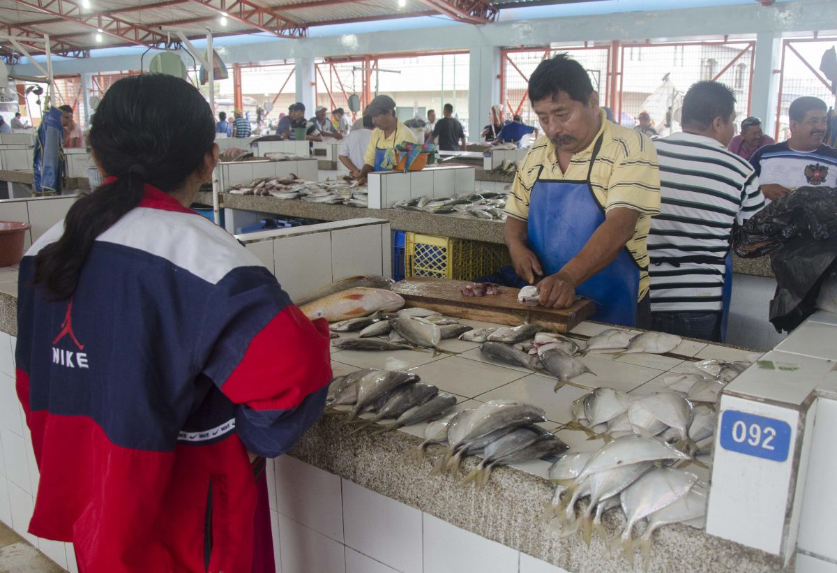 Buying at the Fish Market, La Libertad, Salinas, Ecuador