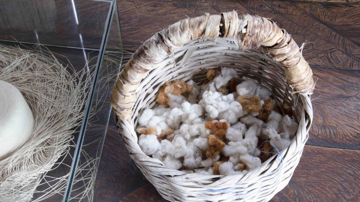 Locally Grown Cotton; Museo Amantes de Sumpa, Santa Elena, Ecuador