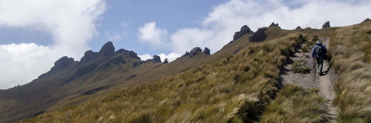 Hiking Cerro Puntas