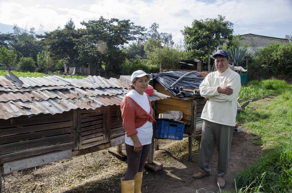 Sonia and Edwin; Oyambarillo, Quito