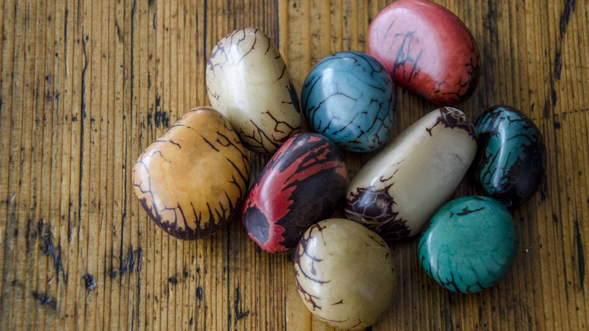 Whole, polished Tagua - the palest color is natural and the others are dyed.