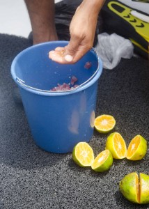 Squeezing Citrus Juice