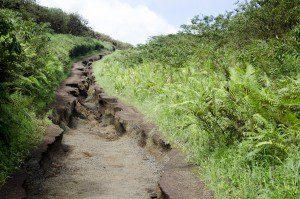 Alternate Trail Back, Volcan Sierra Negra