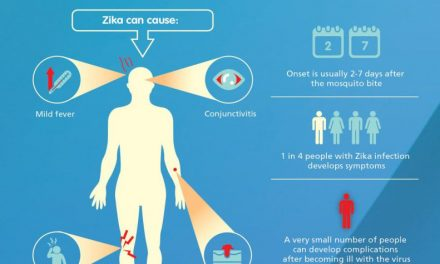 Zika (and other mosquito viruses)