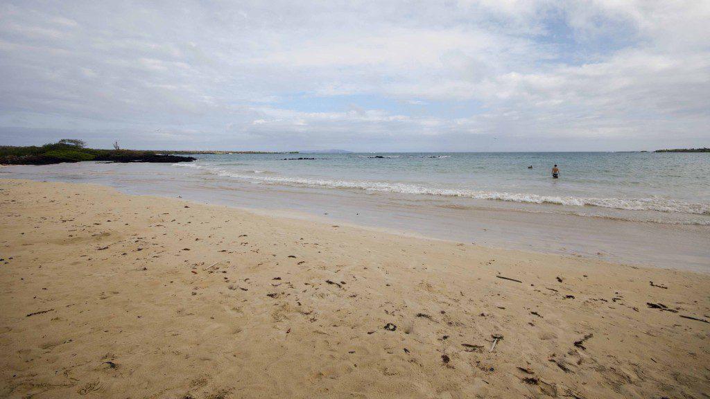 The beach at El Garrapatero