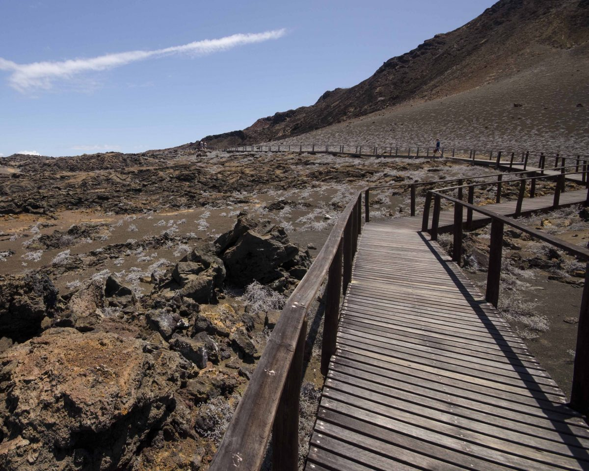 Wooden Trail on Bartolome Island, the Galapagos.