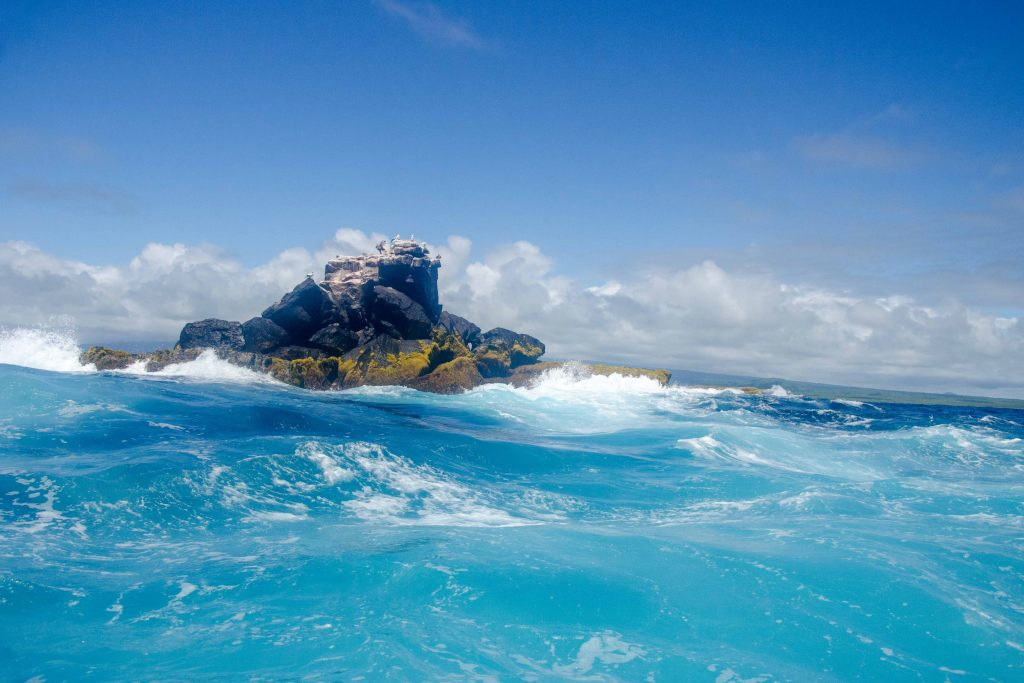 Near Isla Isabela, The Galapagos