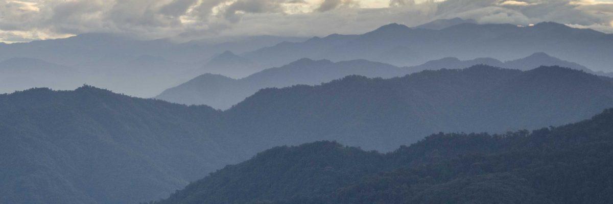 Pichincha Province, Tandayapa