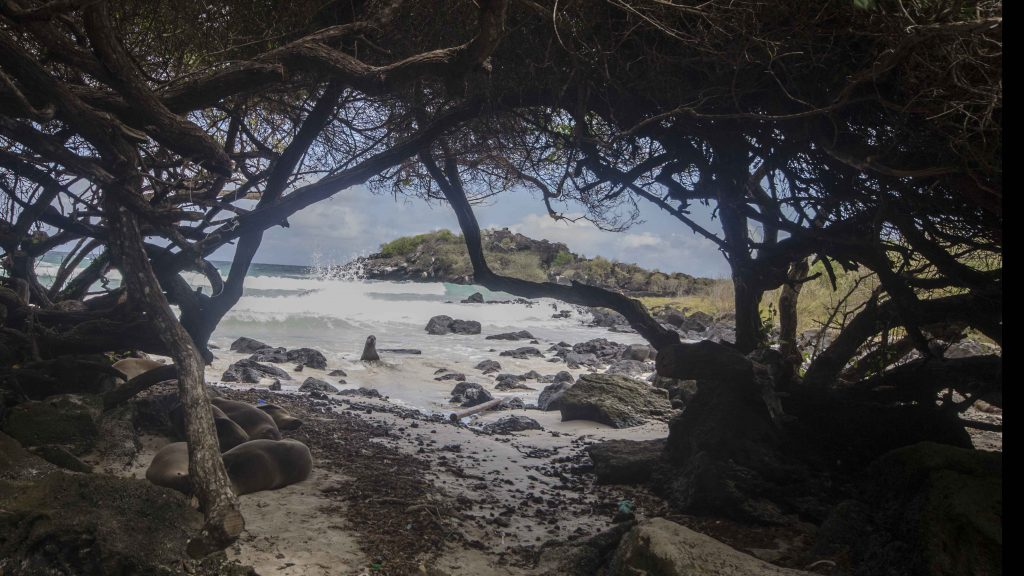 Puerto Chino, view of private cove