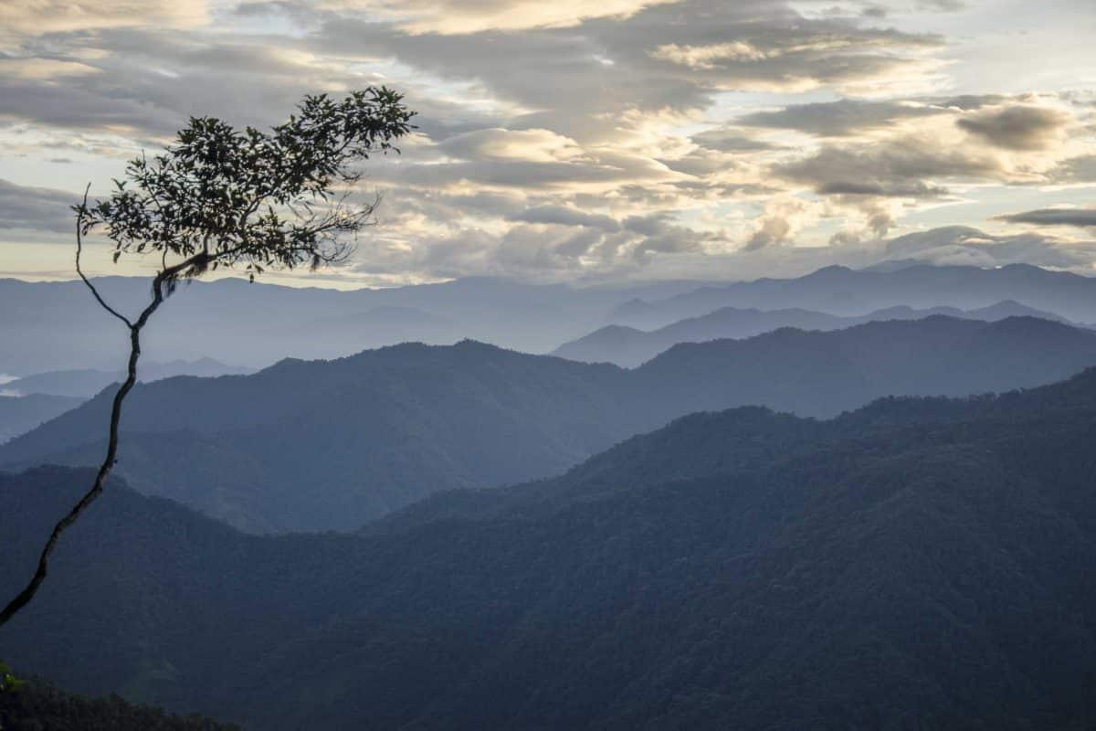 The Andes as seen before dawn from the Tandayapa - San Tadeo Road, Ecuador| ©Angela Drake