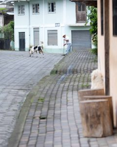 Morning in Pacto, Sweeping the Street