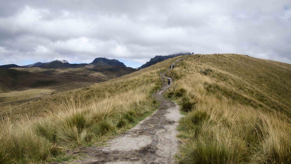 The Trail, Hiking Pichincha, Quito, Ecuador