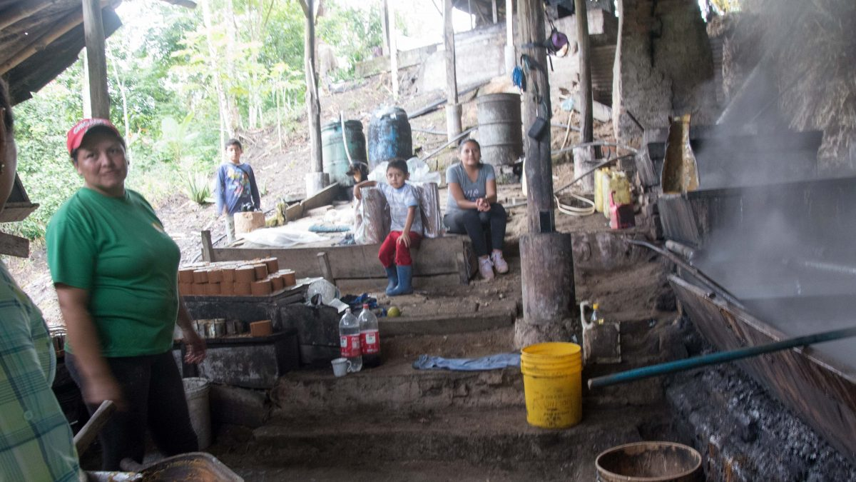 The Panela Makers, Pacto Ecuador