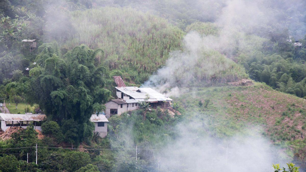 Trapiche, Pacto, Ecuador