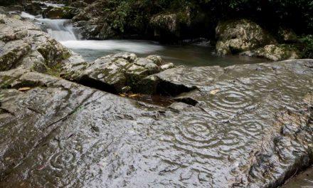 Petroglyphs along the Rio Chirapi, Pacto
