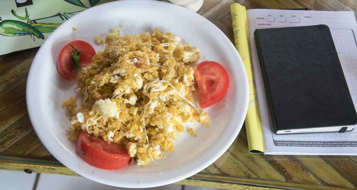 Tigrillo, the Breakfast of Champions