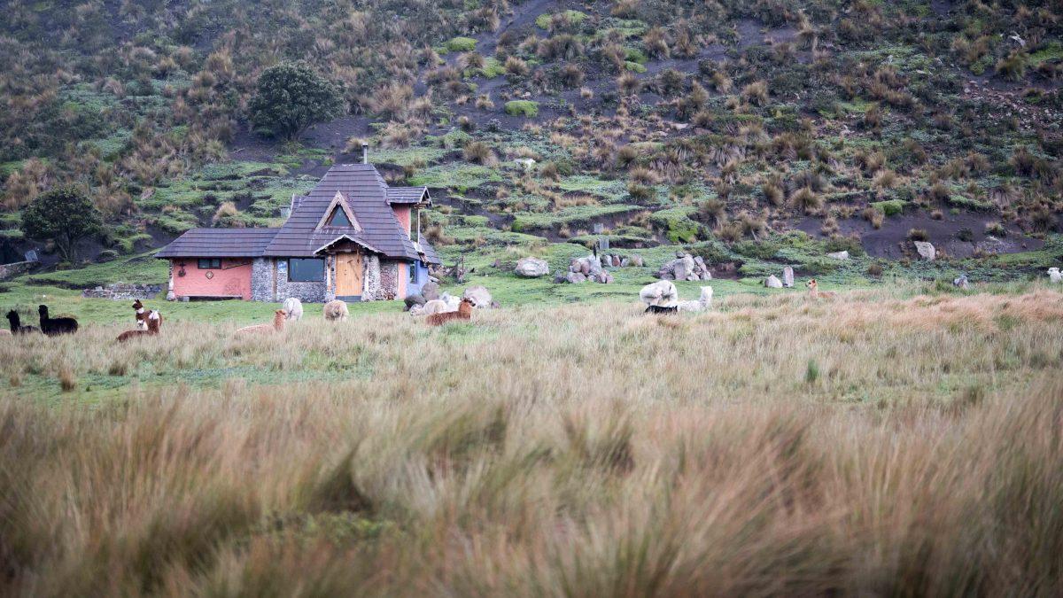 Owner's Cabin, Chimborazo Lodge, Chimborazo Province, Ecuador
