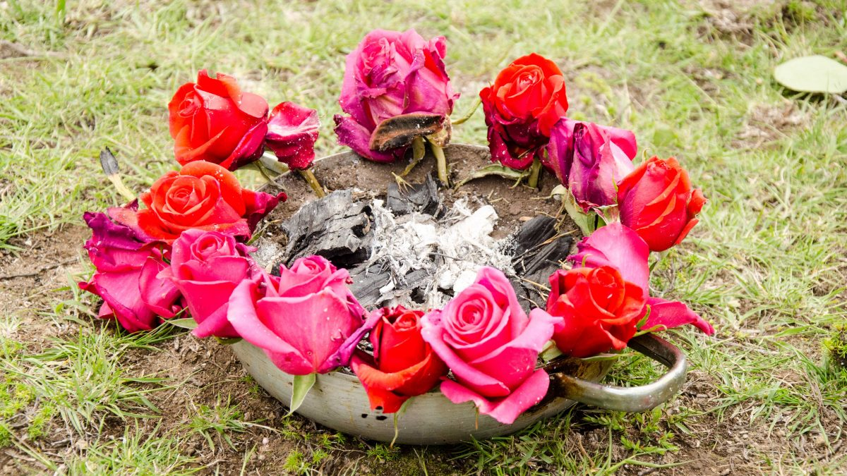 Incense and Roses for the New Fire Cleansing of the Andean New Year, Cochasqui, Ecuador   ©Angela Drake