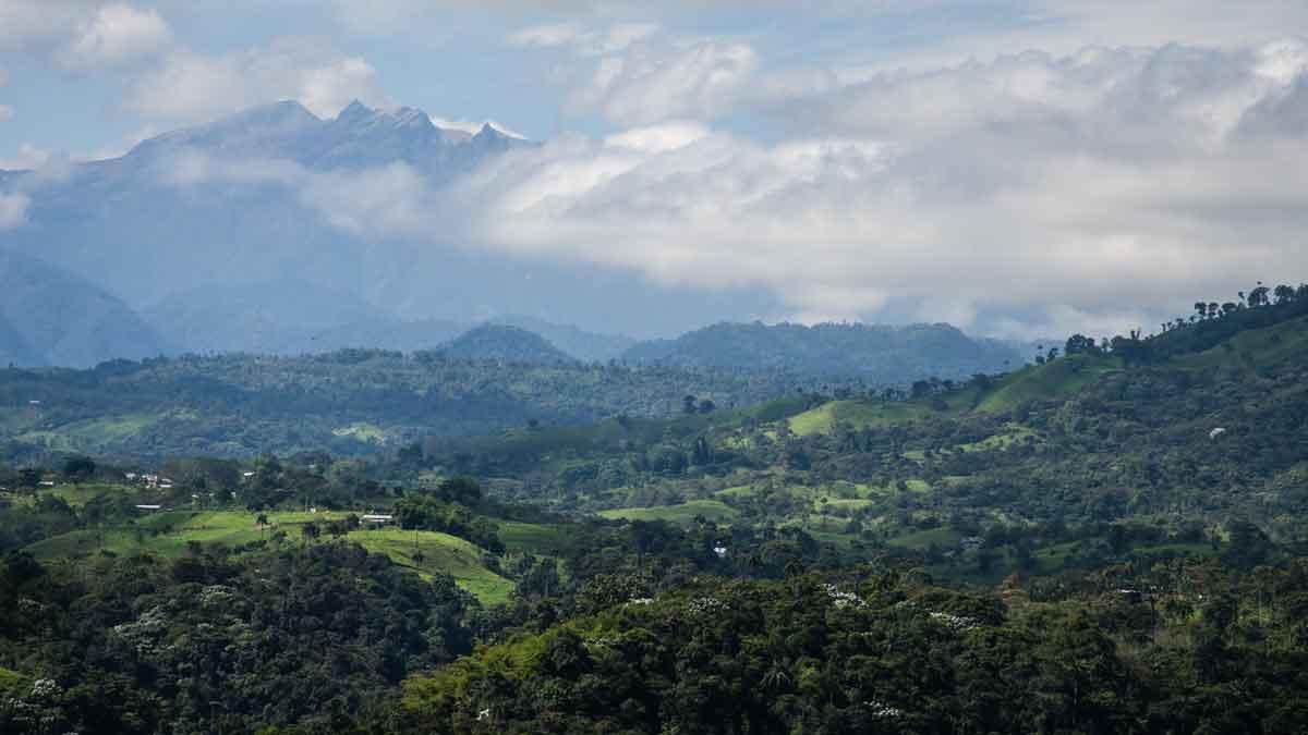 El volcán Pichincha visto desde la finca de café experimental Sol y Montaña en Gualea, Ecuador | © Angela Drake