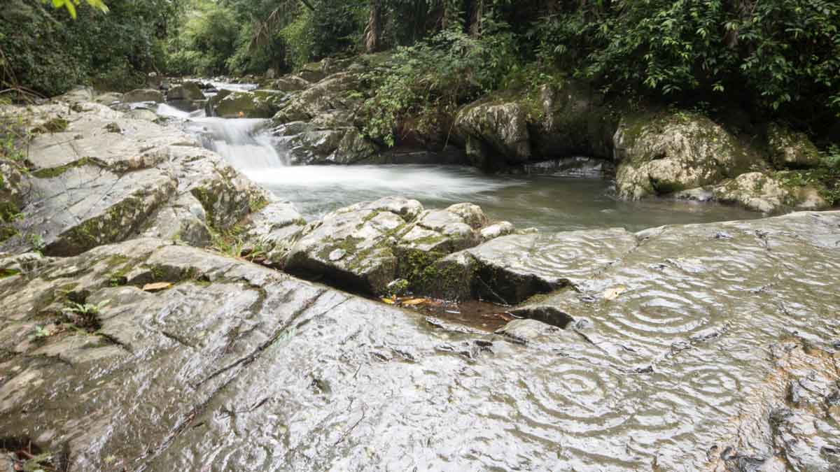 Petroglifos de Yumbo a lo largo del Río Chirapi, Pacto | © Angela Drake