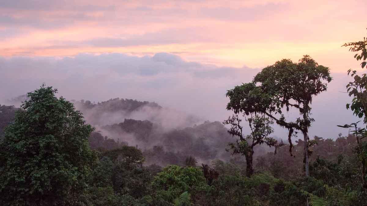 Atardecer desde el Refugio Ángel Paz cerca de Mindo, Ecuador | © Angela Drake