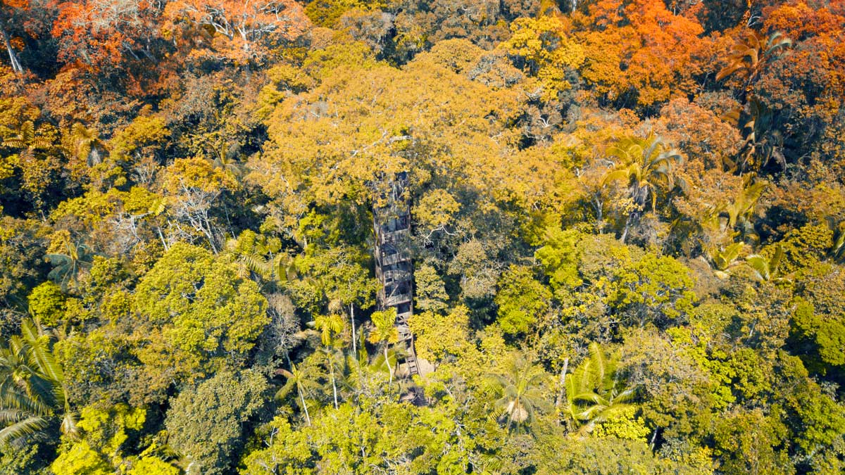 Kichwa Amazon Lodge in the Cuyabeno Wildlife Reserve, Ecuador | photo provided by Edgar Noteno