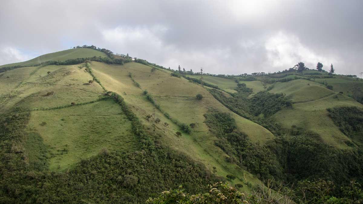 Along the Ruta del Colibrí in Nono, Ecuador| ©Angela Drake